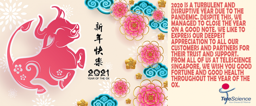 Chinese New Year Greeting 2021